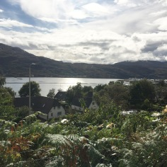 View from front of Ullaview